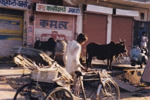 Jaipur photo